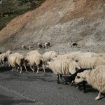 Conducir en Creta