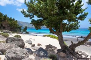 Playa Kedrodasos en Creta