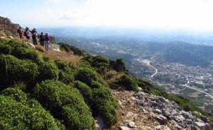 Excursión en Creta - Knossos