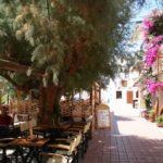 Excursión en Creta - Vinos de Creta